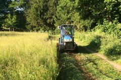 Landschap-beheer-ecologisch maaien-1
