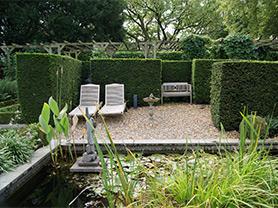 tuin onderhoud vijver